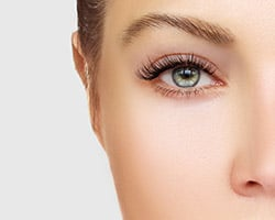 Lash and Brow Treatments The Spa Therapy Room Chelmsford
